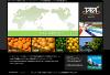 タカ トレーディング株式会社 当Blogの著者が所属する「タカ トレーディング株式会社」のWEBサイトです。タカ トレーディング株式会社はオレンジ、グレープフルーツ、レモン等の柑橘系果物(シトラス)専門の輸入商社です。